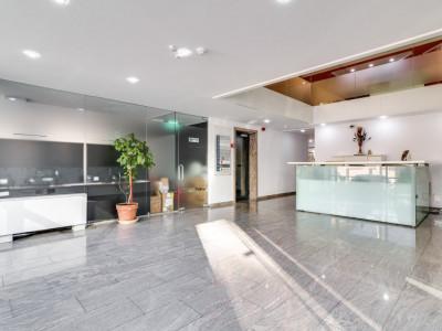 Offices To Let | Promenada Mall // Spatii de inchiriat | Promenada Mall