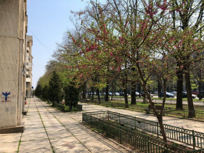 Bd. Unirii - Fantani, apartament luminos de 2 camere!